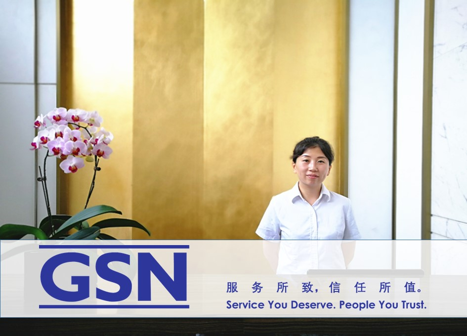 GSN support service